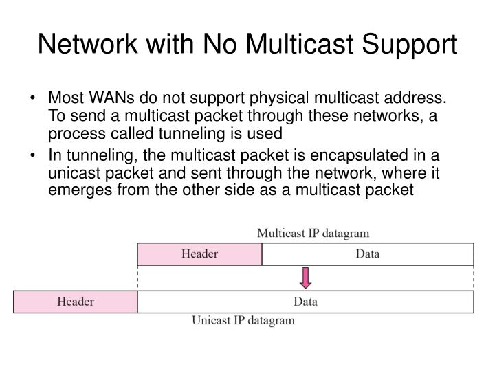 Network with No Multicast Support