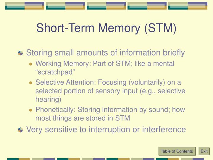 Short-Term Memory (STM)