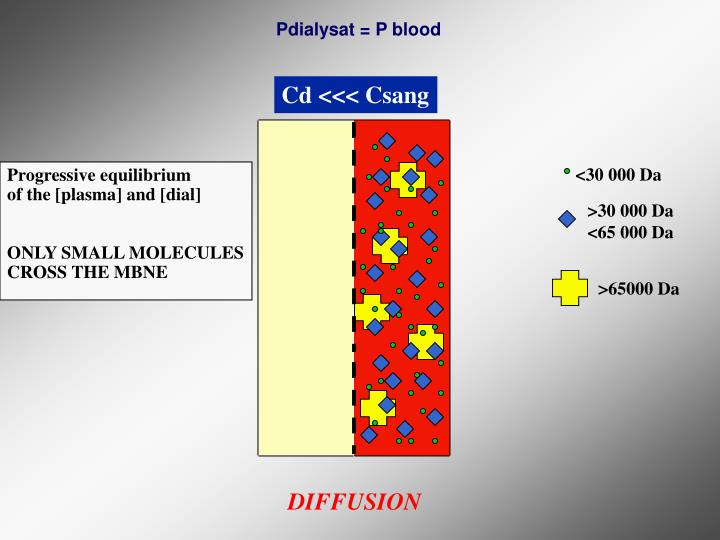 Pdialysat = P blood
