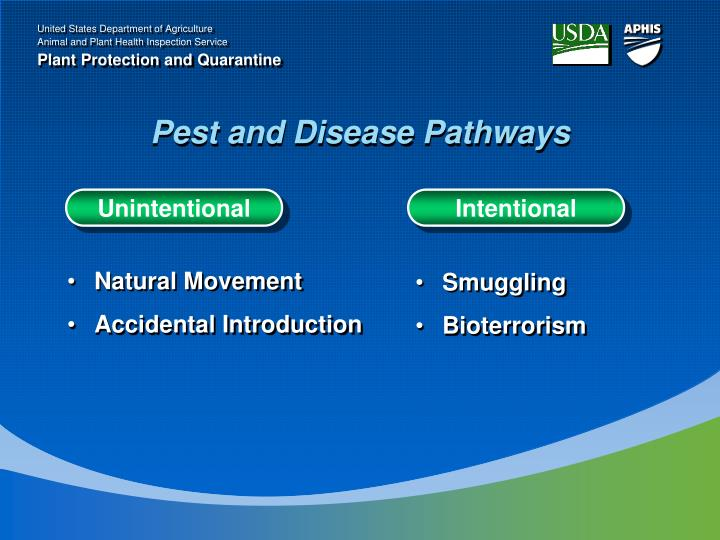 Pest and Disease Pathways