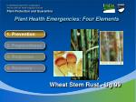 plant health emergencies four elements2
