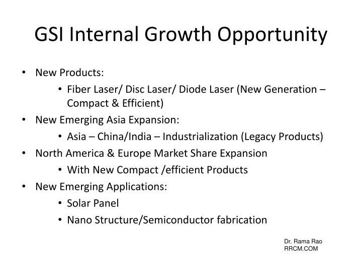 GSI Internal Growth Opportunity
