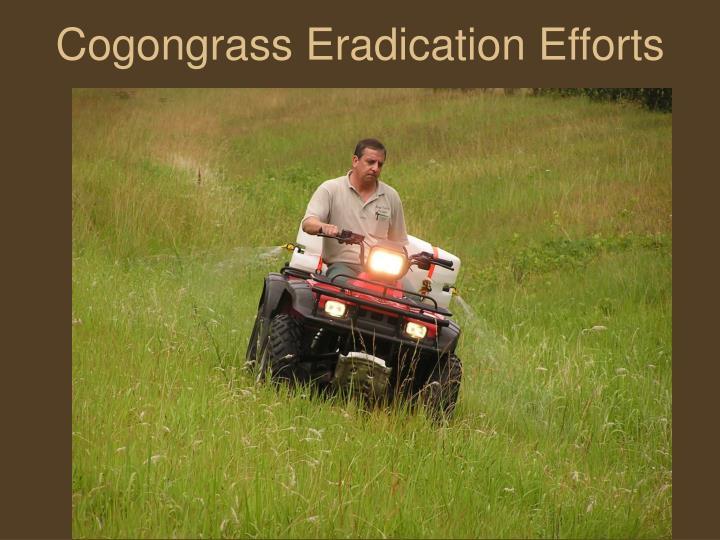 Cogongrass Eradication Efforts