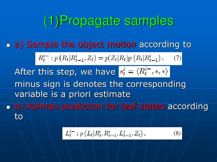 (1)Propagate samples