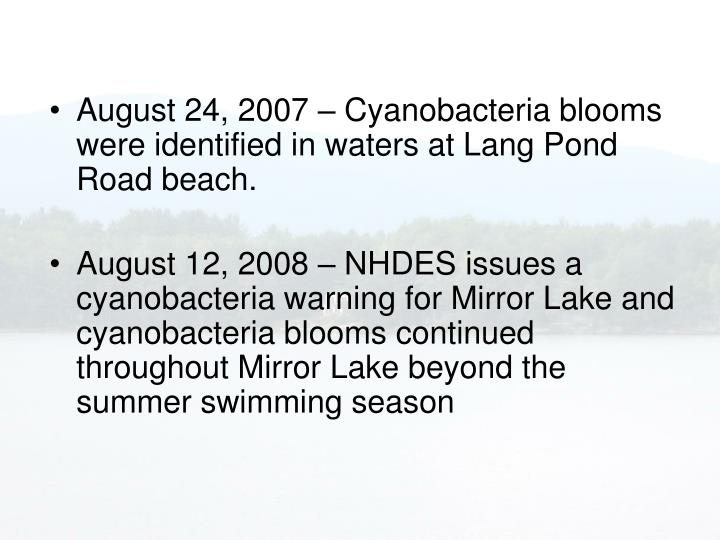 August 24, 2007 – Cyanobacteria blooms were identified in waters at Lang Pond Road beach.