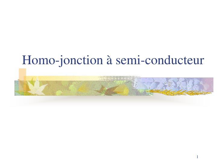 homo jonction semi conducteur
