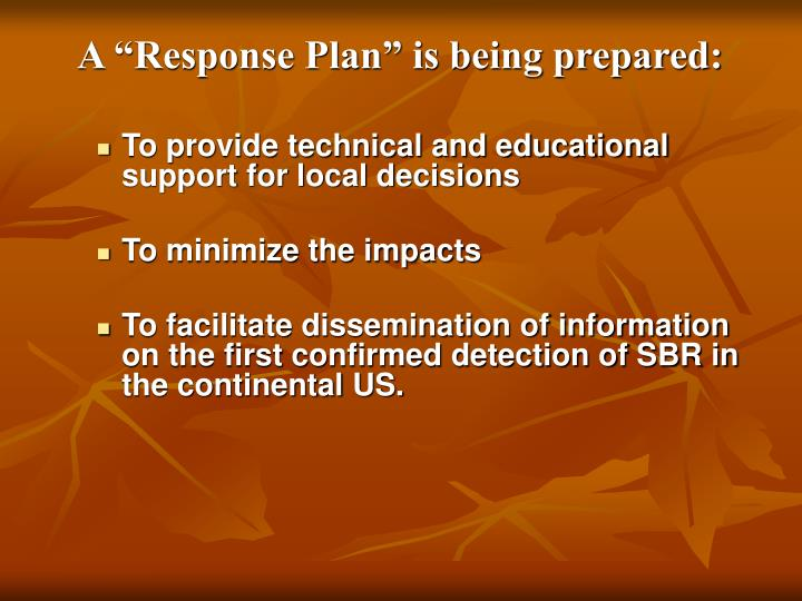"""A """"Response Plan"""" is being prepared:"""