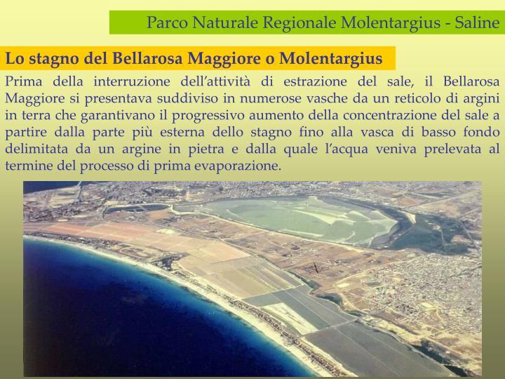 Lo stagno del Bellarosa Maggiore o Molentargius