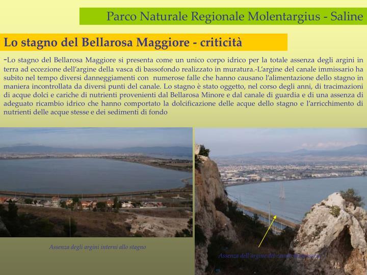 Lo stagno del Bellarosa Maggiore - criticità