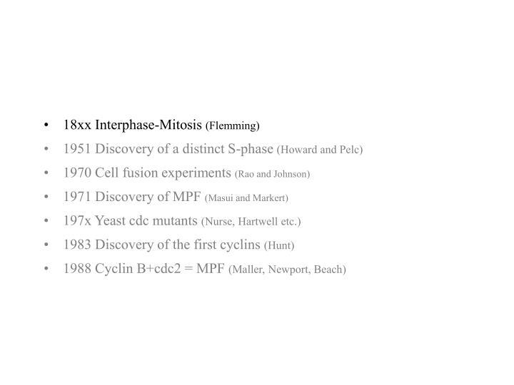 18xx Interphase-Mitosis