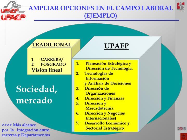 AMPLIAR OPCIONES EN EL CAMPO LABORAL
