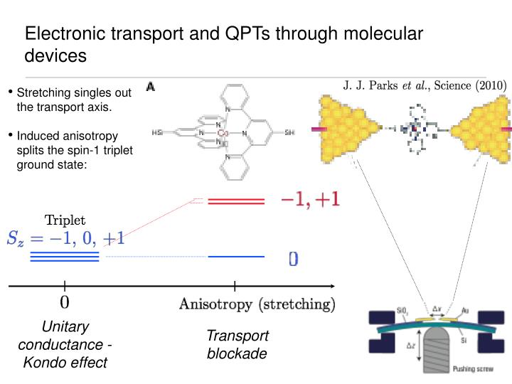 Electronic transport and qpts through molecular devices