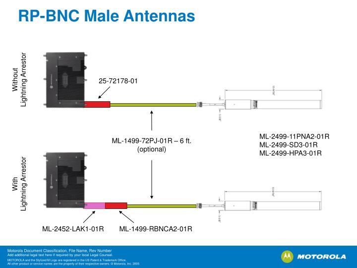 RP-BNC Male Antennas