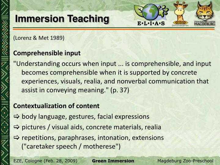 Immersion Teaching