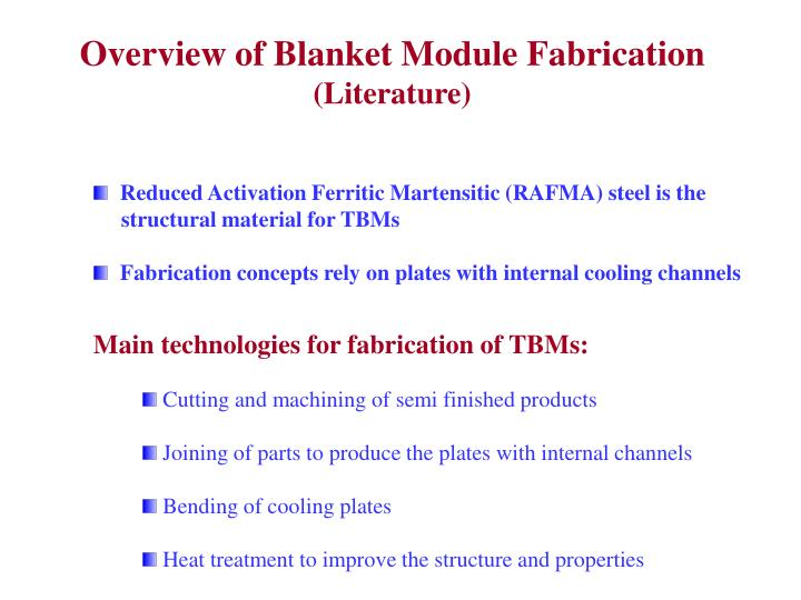 Overview of Blanket Module Fabrication