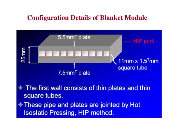Configuration Details of Blanket Module
