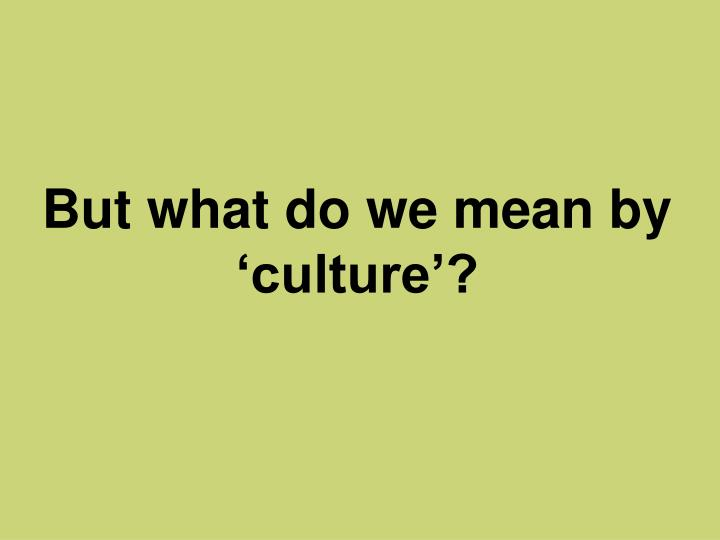 But what do we mean by 'culture'?