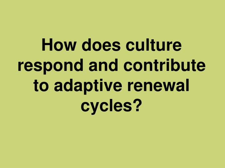 How does culture respond and contribute to adaptive renewal cycles?
