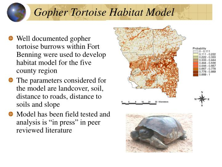 Gopher Tortoise Habitat Model