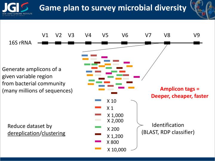 Game plan to survey microbial diversity