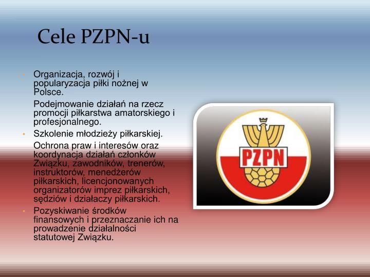 Cele PZPN-u