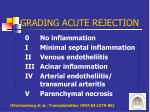 grading acute rejection