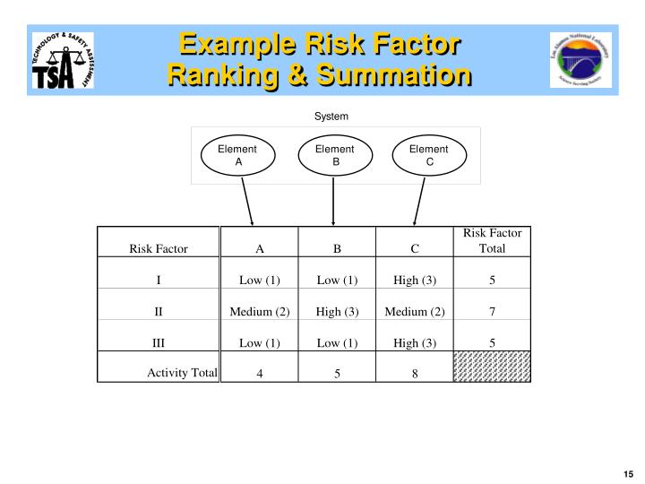 Example Risk Factor