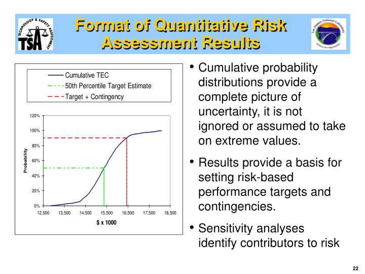 Format of Quantitative Risk Assessment Results