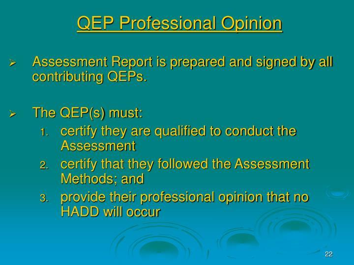 QEP Professional Opinion