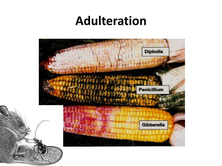 Adulteration