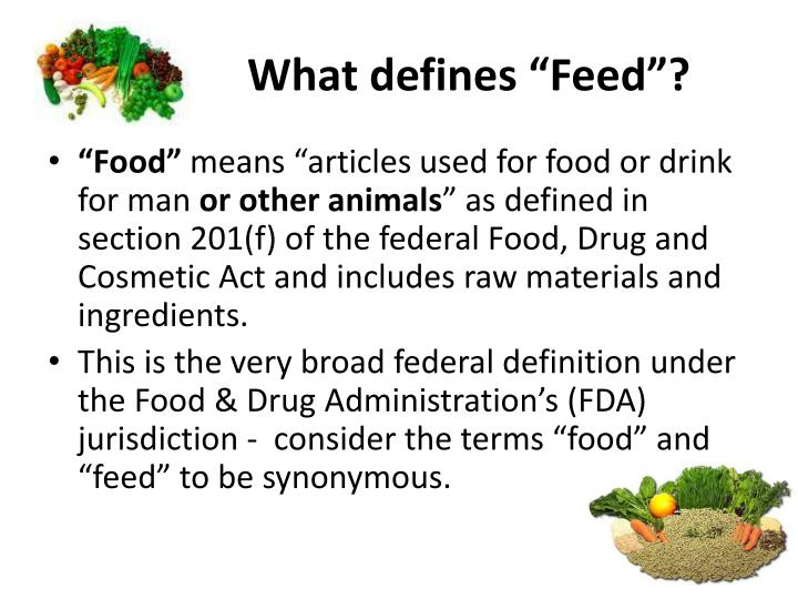 "What defines ""Feed""?"