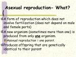 asexual reproduction what