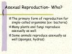 asexual reproduction who