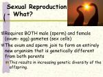 sexual reproduction what