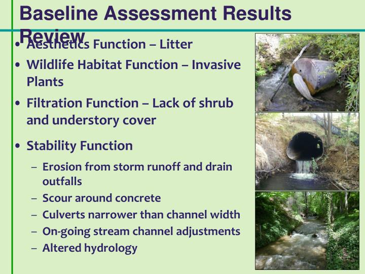 Baseline Assessment Results Review