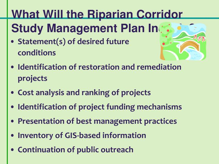 What Will the Riparian Corridor Study Management Plan Include?