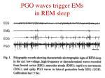 pgo waves trigger ems in rem sleep