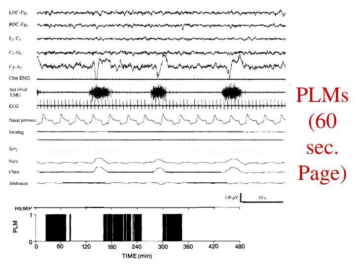 PLMs(60 sec. Page)