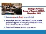 strategic advisory group of experts sage november 2010