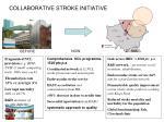 collaborative stroke initiative