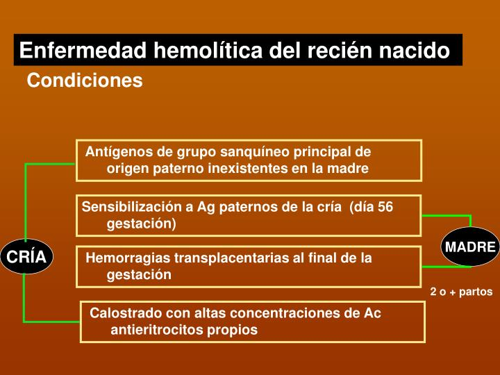 Enfermedad hemolítica del recién nacido