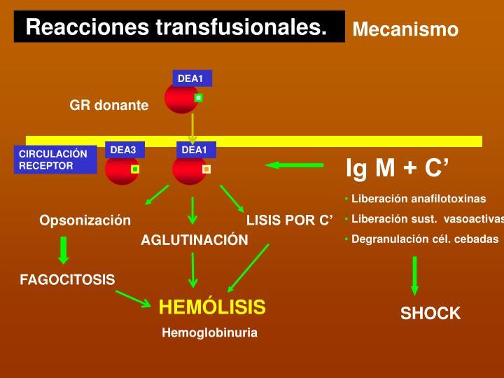 Reacciones transfusionales.