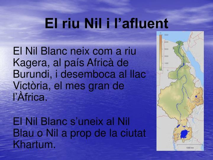 El riu Nil i l'afluent