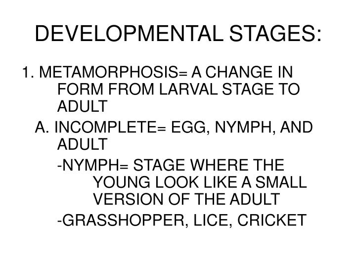 DEVELOPMENTAL STAGES: