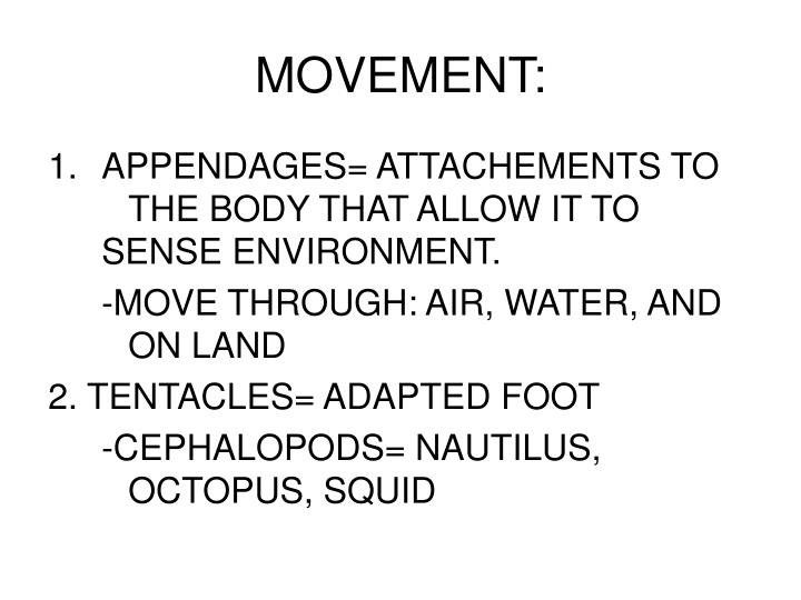 MOVEMENT: