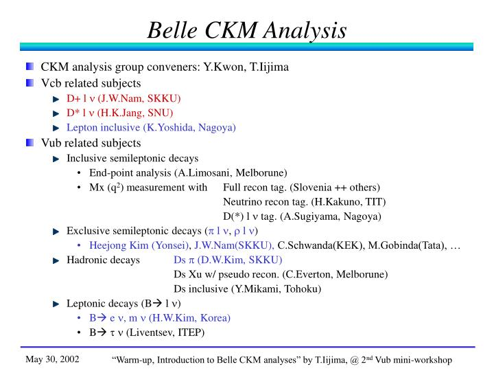 Belle CKM Analysis