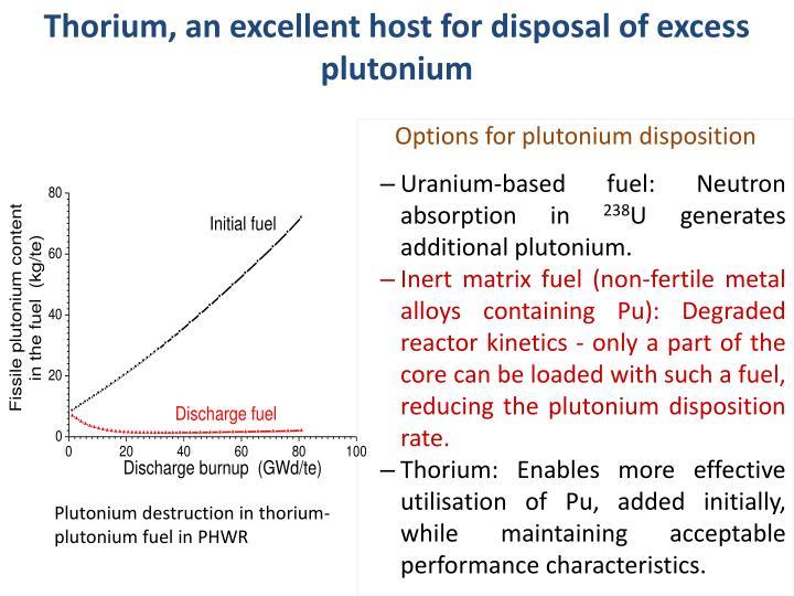 Options for plutonium disposition
