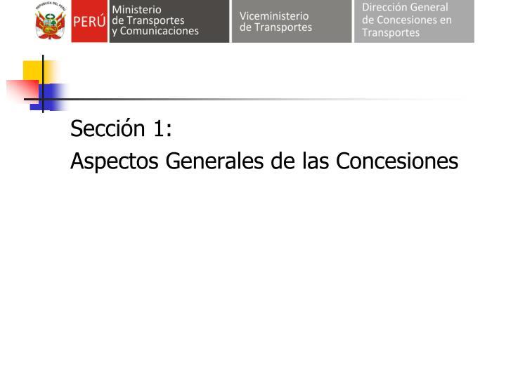 Sección 1: