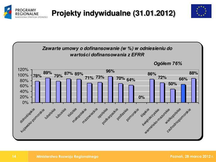 Projekty indywidualne (31.01.2012)