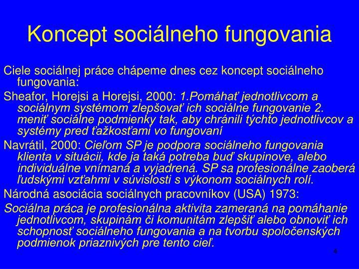 Koncept sociálneho fungovania